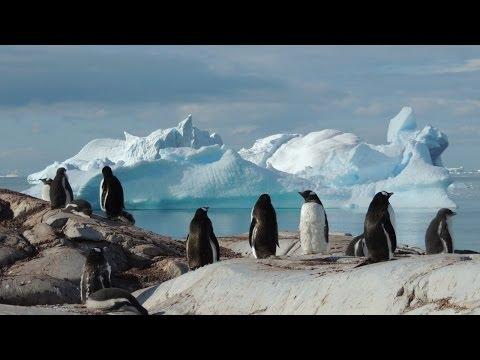 A3 Antarctica 2014