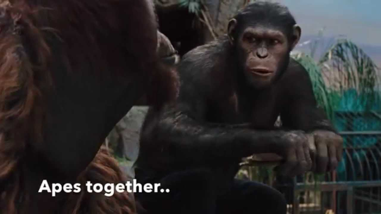 Rise Of The Planet Of Apes Apes Together Strong Youtube