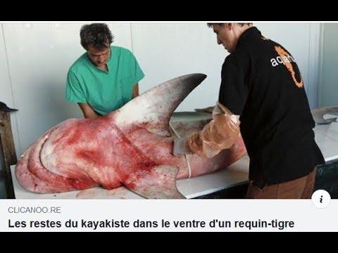 Restes Humains Dans Un Requin : Les Proches Du Kayakiste Ont Reconnu Sa Gourmette - 27/12/2019