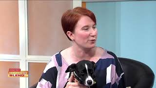 Humane Society of Tampa Bay | Morning Blend