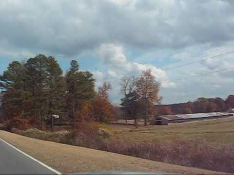 Fall Carolina Drive