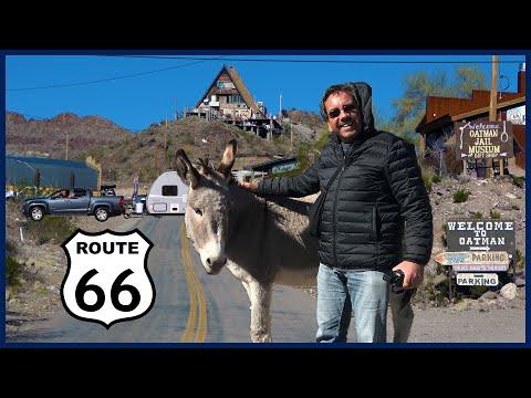 The West 2019 Part 8: Lake Havasu City, Oatman, Kingman, And Laughlin
