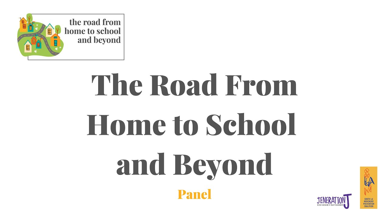 The Road From Home to School Panel