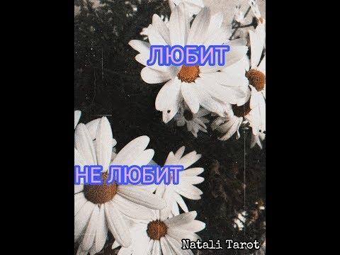 ОНЛАЙН ГАДАНИЕ ЛЮБИТ - НЕ ЛЮБИТ от Natali Tarot | Tarotonline Love - Does Not Love By Natali Tarot