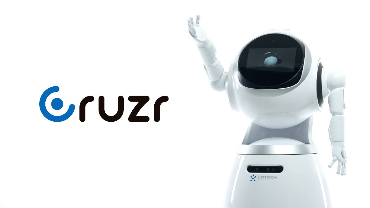 Cruzr: a Cloud-Based Intelligent Humanoid Service Robot