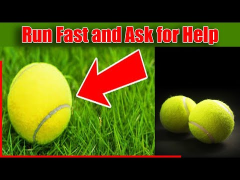 If You See a Random Tennis Ball, Don't Pick It Up! Run Fast and Ask for Help!