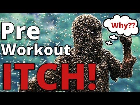 Why Does Pre Workout Make You Itch?