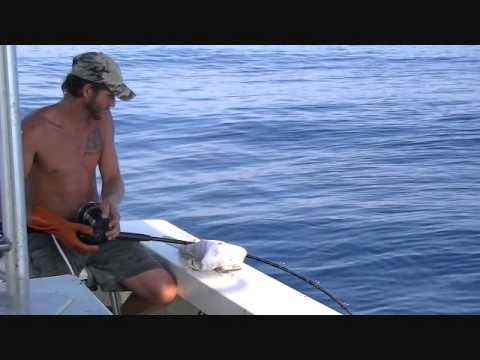 Commerical Red grouper fishing on the Gulf of Mexico.wmv