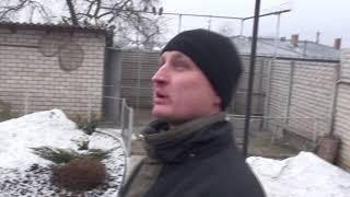 НГ Голуби (Лёзика) Лодинов Сергей       +38(097)396-90-54 моб. Украина.Кривой Рог