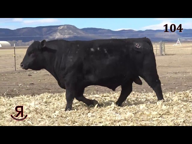 Reverse Rocking R Ranch Lot 104