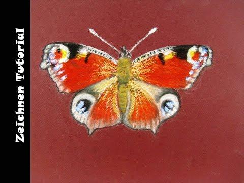 Zeichnen mit Pastellkreide: Schmetterling / Zeichnen lernen
