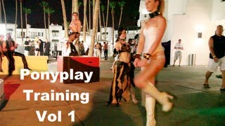 BDSM Classes - PonyPlay training guide
