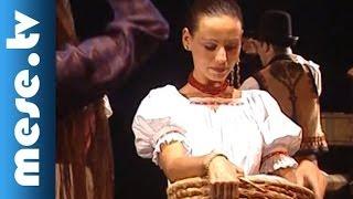 BM Duna Művészegyüttes: Hamupipőke III. rész (mese, táncszínház) | MESE TV