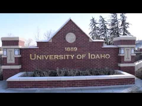 Musicals, Plays and Winter Days: University of Idaho Theatre