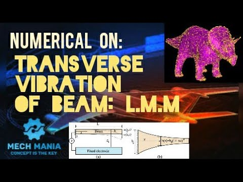 Transverse Vibration of