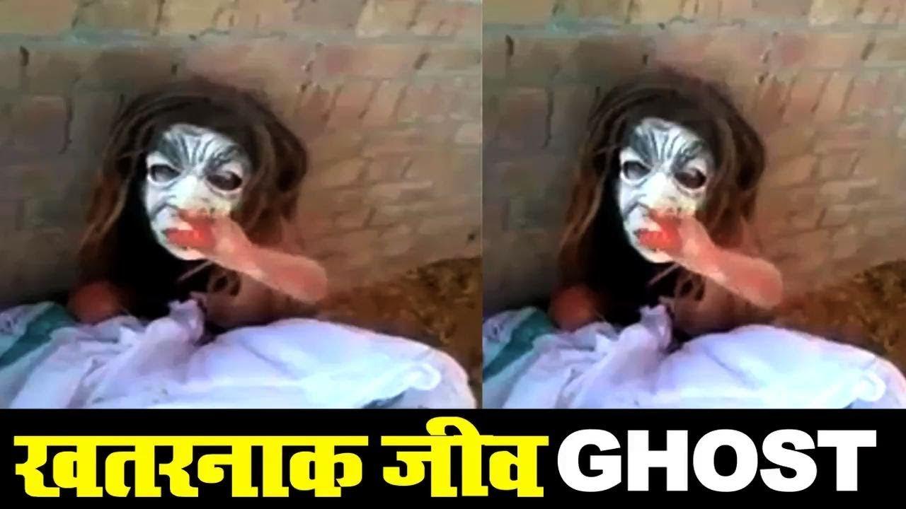 Download Scary GHOST-like Creature caught in Punjab  India डरावना जीव को लोगो ने पकड़ा