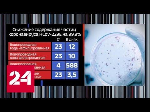 В системе водоснабжения Парижа обнаружили коронавирус - Россия 24