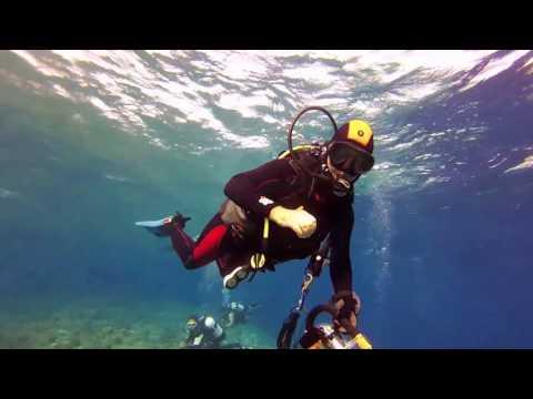 Port Sudan Dive Trip 2016