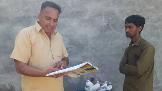 Garmio me Kabootar udane Ka treeka part 2 by babbu Kainth 8872117070--9417399235