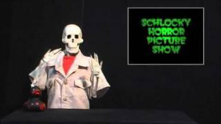 Double D Avenger part 1.- The Schlocky Horror Picture show.