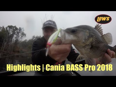Highlights | Cania BASS Pro 2018