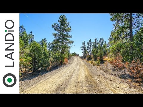 SOLD : Land For Sale in Colorado : 10 Acre Wooded Mountain Homesite with Electricity in Southern CO