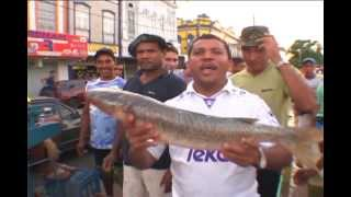 VER-O-PESO, a maior e mais exótica feira ao ar livre da América Latina.