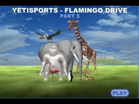 Yetisport Flamingo Drive