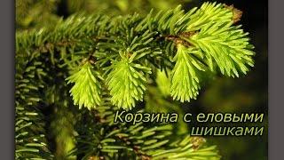 Константин Георгиевич Паустовский. Корзина с еловыми шишками аудиорассказ.