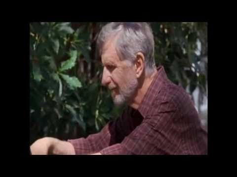 René Auberjonois - [Part 1] - What Is This Really About?