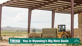 Hay in Wyoming's Big Horn Basin