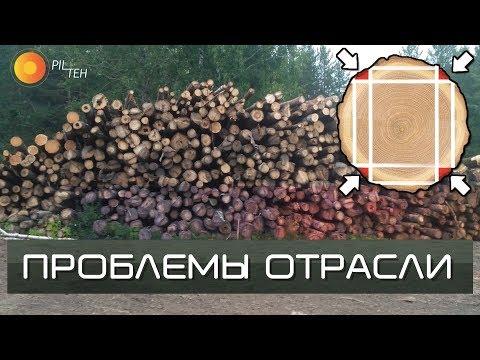 ПРОБЛЕМЫ в ЛЕСНОЙ отрасли в России. Что делать с тонкомером?