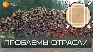 ПРОБЛЕМЫ в ЛЕСНОЙ отрасли в России. Что делать с тонкомером