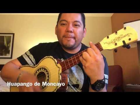 Mariachi Vargas de Tecalitlan. Huapango de Moncayo. Vihuela