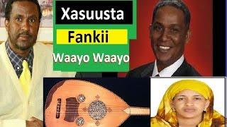 5 Xasuustii Fanka iyo Waayo Waayo, Xamar iyo Hargaysa