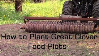 How to Plant The Best Clover Food Plots and Improve Soil Nitrogen