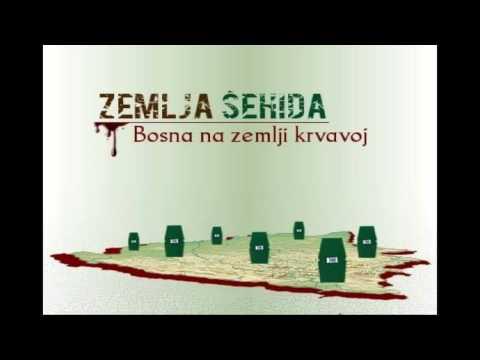 Srpska fukara (Emir Hadžihafizbegović)