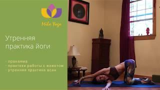 Утренние практики йоги - дыхание, асаны, работа с животом