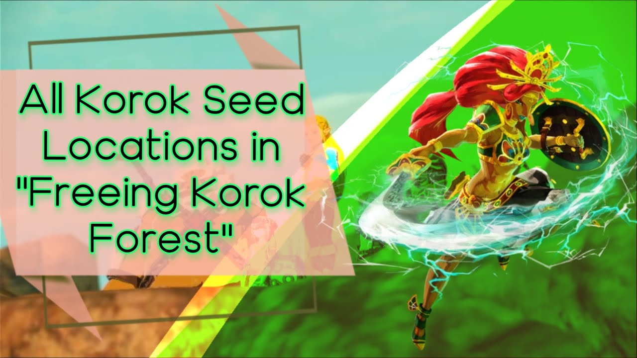 Hyrule Warriors Age Of Calamity Freeing Korok Forest All Korok Seed Locations Youtube