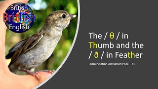 Improve Your British English Pronunciation - The / θ / In Thumb And The / ð / In Feather