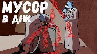 видео: Зачем нам мусор в ДНК? Александр Панчин на QWERTY