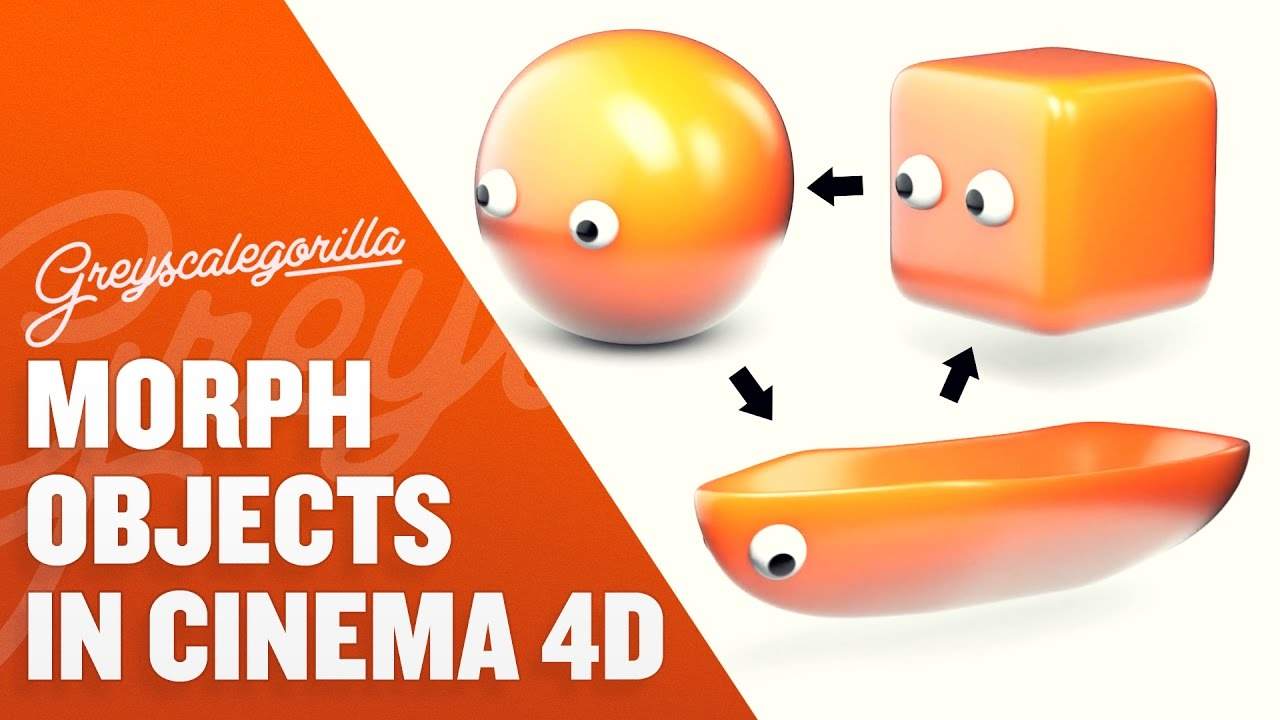 How To Morph Between Two Objects in Cinema 4D | Greyscalegorilla