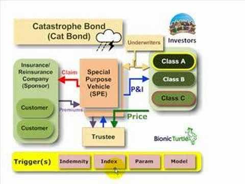 FRM: Catastrophe (Cat) Bond