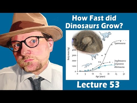 How fast did Dinosaurs Grow?