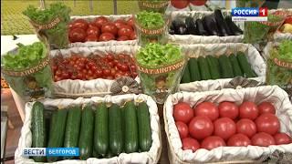 ГТРК Белгород - Выставка достижений сельскохозяйственной отрасли представлена в Белгороде