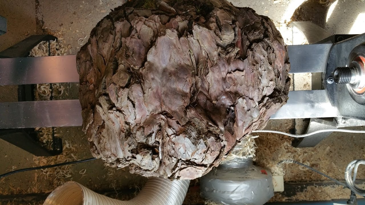 Woodturning Weird Burl #1