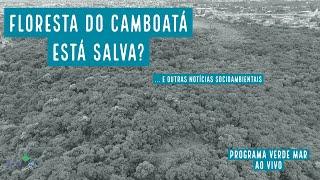 Prefeitura do Rio enterra projeto de autódromo sobre a Floresta do Camboatá - VERDE MAR AO VIVO