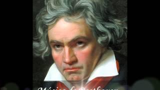 · Sinfonía n.º 7 · Beethoven · Primer Movimiento  Poco sostenuto - Vivace.