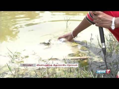 No end to pollution of Noyyal river