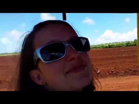 Dole Pineapple plantation train ride